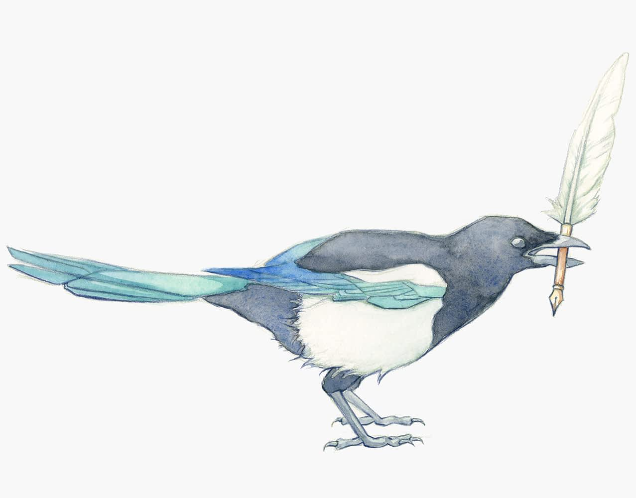 Magpie holding a quill